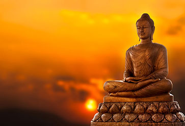 shop buddha with yellow background wallpaper in zen theme