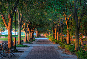 Charleston South Carolina Park