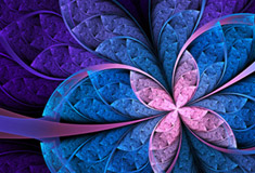 Colorful Flower Abstract