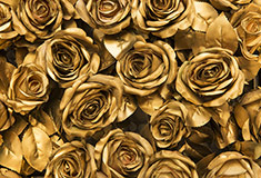 Golden Fabric Roses