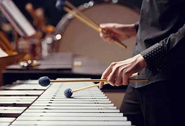 Musician Playing The Vibraphone