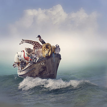 Boat with Wild Animals