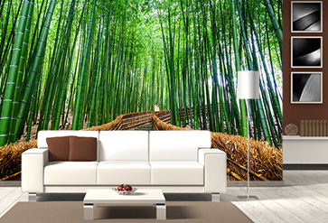 Shop Path To Bamboo Forest Wallpaper In Nature