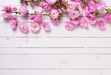 Shop Flowers On Painted Wood Wallpaper In Flowers Amp Leaves